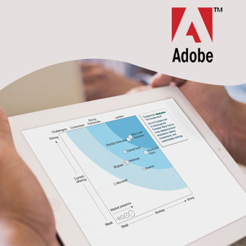 Adobe holds top position among Web Analytics Vendors