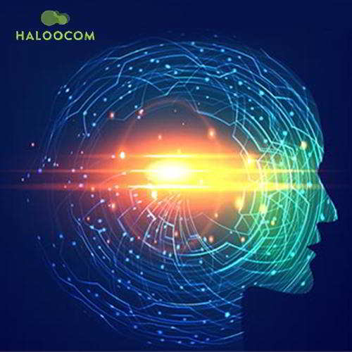Haloocom to change the future of communication landscape