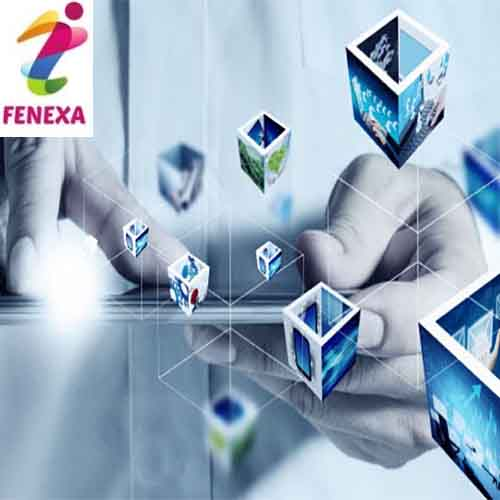 Fenexa is showing the way for the Indian System Integration Business